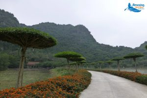 Nham Valley – A Wild Oasis That You Might Be Looking For - Amazing Ninh Binh