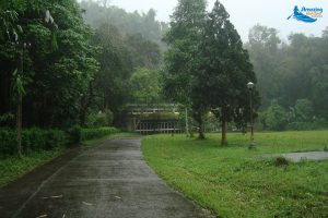 Cuc Phuong National Park- The First National Park In Vietnam - Amazing Ninh Binh