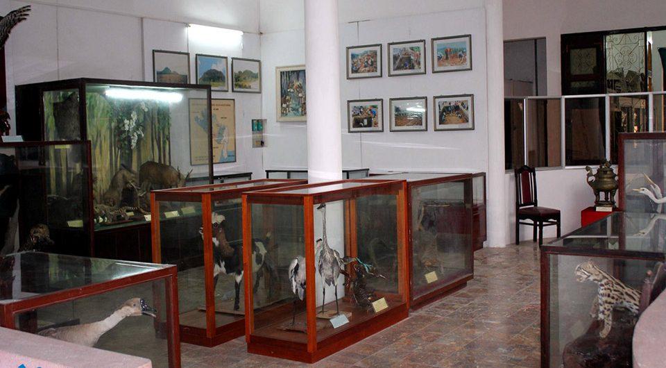 Ninh Binh Museum - Amazing Ninh Binh