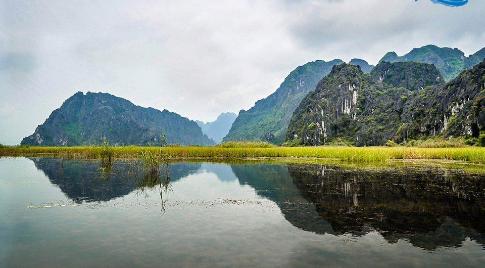 Van Long Lagoon - Amazing Ninh Binh